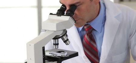 Акинозооспермия – когда живчики замерли